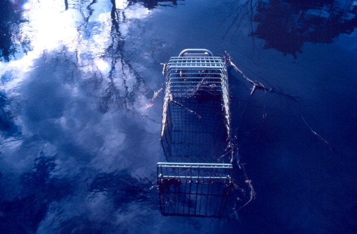 Shopping Trolley by Dom Atreides on Flickr, All Creative Commons